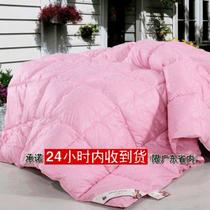 冬被子棉被/双人/单人/被芯 被子 加厚秋冬被被芯 防羽布被子 价格:270.00