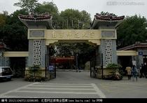 南京师范大学分析哲学考研材料笔记讲义考研真题等 价格:175.00