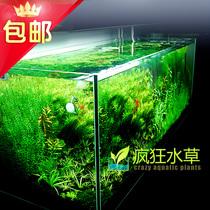【疯狂水草】卓异牌超白缸 水草缸 玻璃水族箱  特价包邮生态鱼缸 价格:160.00