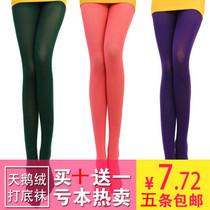 秋季冬丝袜加厚天鹅绒糖果色打底袜连裤袜连体丝袜 女袜子5双包邮 价格:7.70