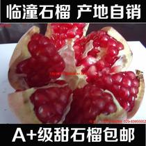陕西特产西安临潼石榴 新鲜水果薄皮软籽甜大红石榴1斤果礼盒包邮 价格:150.00