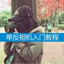 入门到精通数码单反摄影教程佳能尼康单反相机技巧视频教材非书籍 价格:5.00
