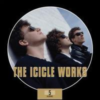 Icicle Works - 5 Album Box Set 美订CD 价格:246.00