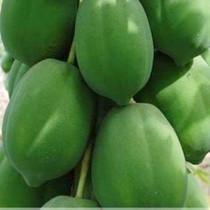 新鲜水果广西青木瓜番木瓜可丰胸催奶下奶通乳煲汤包邮5斤装 价格:20.00
