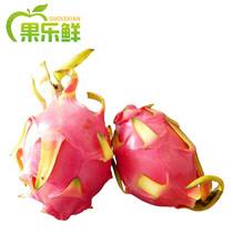 果乐鲜越南火龙果新鲜水果 进口白心火龙果1个 满6个江浙沪皖包邮 价格:7.50