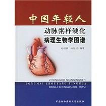 全新正版中国年轻人动脉粥样硬化病理生物学图谱/赵培真,杨方 价格:72.10