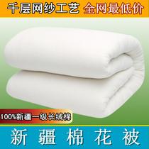 新疆一级有网长绒棉花被芯 特价双人春秋棉被子 棉絮夏凉被胎包邮 价格:54.00