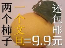 玉环文旦楚门柚子新鲜水果蜜柚 (1个送2个)甜柿子特产江浙沪包邮 价格:9.99