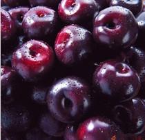 新鲜水果特价黑布林  进口智利黑布林 黑李子 4斤起售江浙沪包邮 价格:14.50