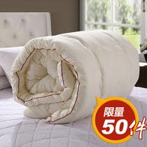 纤维被 棉花被子 加厚春秋被 冬被 单人被芯 双人棉被 棉絮被褥子 价格:68.00