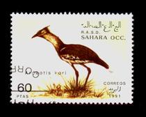 外国邮票 549 西撒哈拉盖销 邮票 单枚 动物 价格:0.60