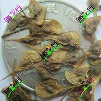 领春木种子 120元一斤 云叶树-正心木-木桃-种子 新采苗木种子 价格:120.00