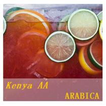 【下单烘焙】肯尼亚Kenya AA咖啡豆精品阿拉比卡 蜜桃太妃糖 价格:143.50