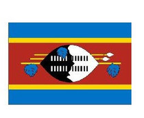 世界国旗 西撒哈拉国旗 2号 240cm*160cm最好的料 价格:80.00