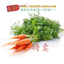老一特卖 新鲜 蔬菜 带叶 小胡萝卜 手指胡萝卜8.50元500g 价格:8.50