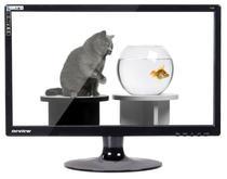 新境界19寸LED液晶显示器 新境界T198  保3年【消保+实体】 价格:599.00