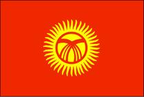 5号吉尔吉斯斯坦国旗 各种规格旗帜可定做 串旗万国旗党旗有售 价格:25.00