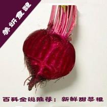 美妍食馥2013散装500克32280cln11034633555cln120032四月红菜头 价格:4.50
