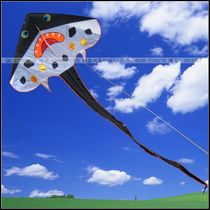大鳐鱼 三角风筝 易飞好携带 潍坊风筝 2.13*5.14米 户外运动 价格:28.00