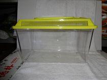 迷你宝贝大号手提仓鼠笼 外带盒 运输盒 魔法鱼缸 乌龟盒 爬宠缸 价格:16.00