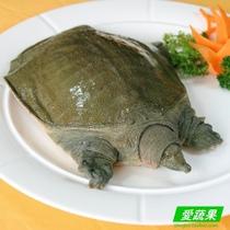 【爱蔬果】绿色食品优质水产 散养野外甲鱼 水鱼 团鱼 请拍2斤 价格:89.90
