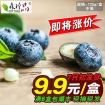 【天天特价】新鲜蓝莓 蓝梅 新鲜水果 蓝霉鲜果6盒包顺丰 预售