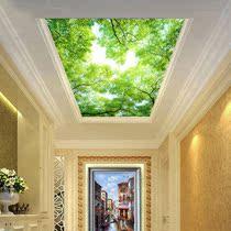艺术玻璃吊顶天花装饰品通道专用走廊过道客厅透光冰晶自然风景画