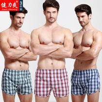 健力爽3条纯棉男士宽松大码短裤
