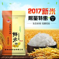 2017新米 正宗东北盘锦蟹田大米10kg 20斤珍珠米寿司粳米农家自产
