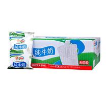 【天猫超市】伊利 纯牛奶 240ml*16包/提 整箱袋装小枕早餐配面包