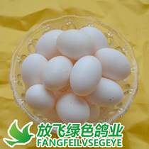精品大个鸽子蛋和双黄鸽蛋套餐五谷杂粮新鲜土鸽蛋30枚装顺丰包邮