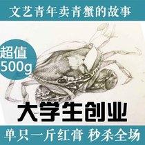 满膏状态 正宗三门青蟹大红膏蟹母螃蟹红鲟海鲜水产鲜活 单只一斤