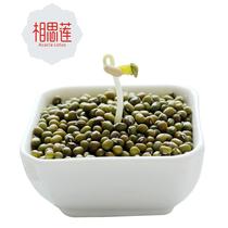 【第二份半价】相思莲 绿豆500g 新鲜农家自种小绿豆汤原料杂粮