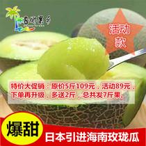 海南水果 日本引进 海南玫珑瓜 网纹瓜甜瓜 5斤多送2斤 多省包邮