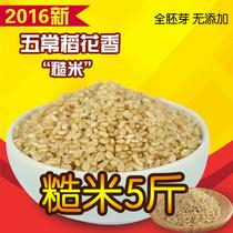 东北五常稻花香糙米 农家大米玄米农家胚芽米新米 5斤价包邮