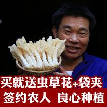 【寨吗】竹荪干货100gx1袋竹笙农家土特产天然无硫菌菇井冈山特产