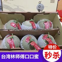 日本静冈玫珑网纹瓜新鲜水果哈密瓜 林师傅白雪蜜口口蜜甜瓜5个装
