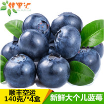 新鲜大粒蓝莓140克*4盒蓝莓鲜果新鲜水果营养丰富孕妇水果包顺丰