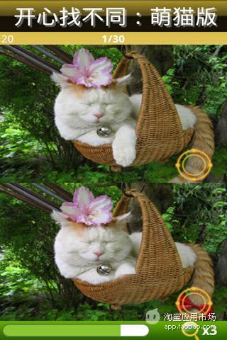 开心找不同之萌猫版