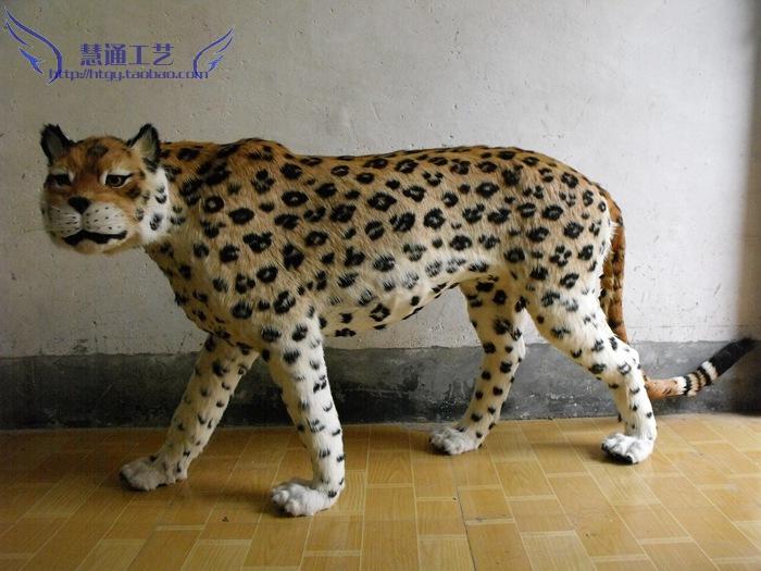【大型野生动物标本金钱豹模型摆件拍照影楼橱窗道具
