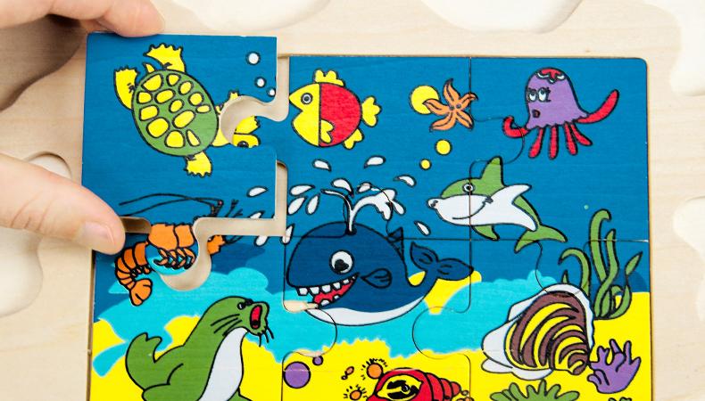 木贵婴海洋钓鱼板_26