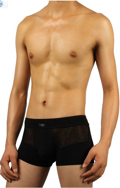 The genuine TIKU Tiku soft and comfortable men's underwear Modal semi-breathable mesh pants 1015