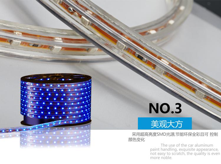 светодиодный дюралайт Delixi  LED 3528 60 - 6