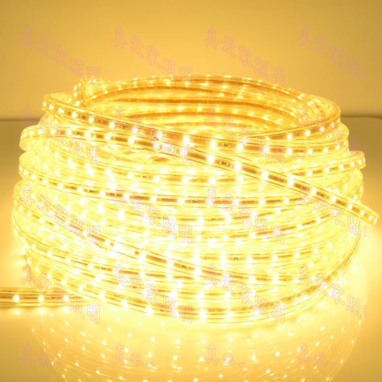 Love home 3528 SMD led lights with light bar 60 beads meter living room bedroom ceiling lights with waterproof flexible strip 220V