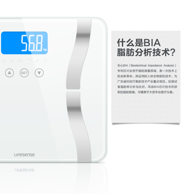 Electronic Body Fat Scale